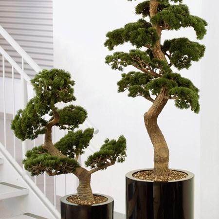 Obrázek pro kategorii Umělé stromy a rostliny