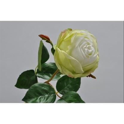 Růže zelená/bílá 46 cm_0