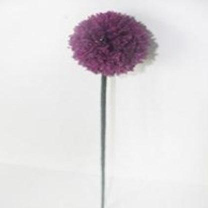 Kytka Allium D.55cm - fialová_0