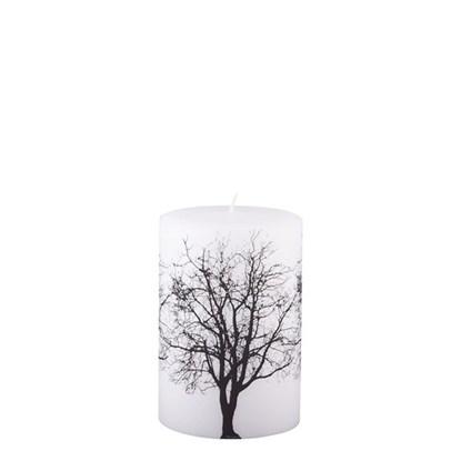 Svíčka BRANCH 15 cm_0