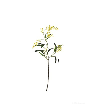 Umělá kytka Mimóza 65 cm_0