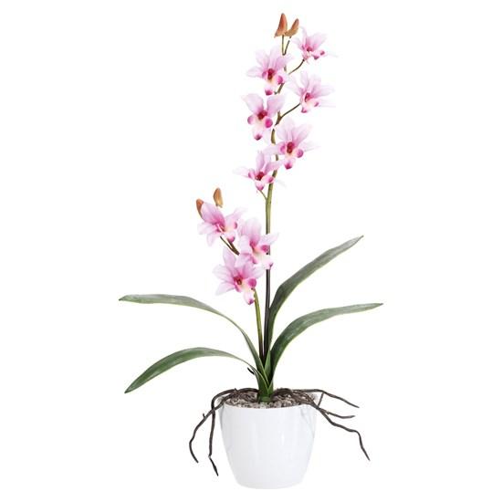 Orchidej 60cm růžová (bez květináče)_0