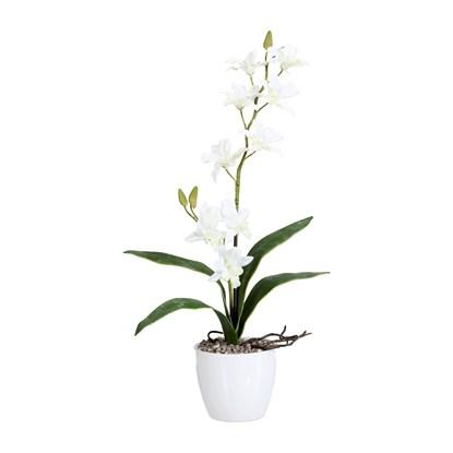 Orchidej 60cm bílá (bez květináče)_0