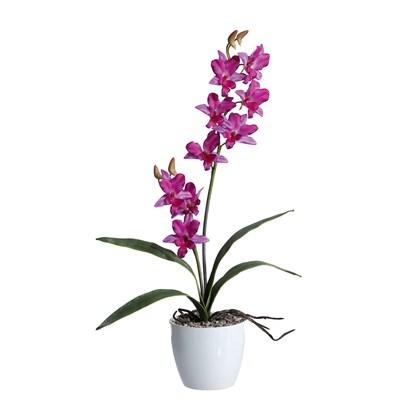 Orchidej 60cm fialová (bez květináče)_0