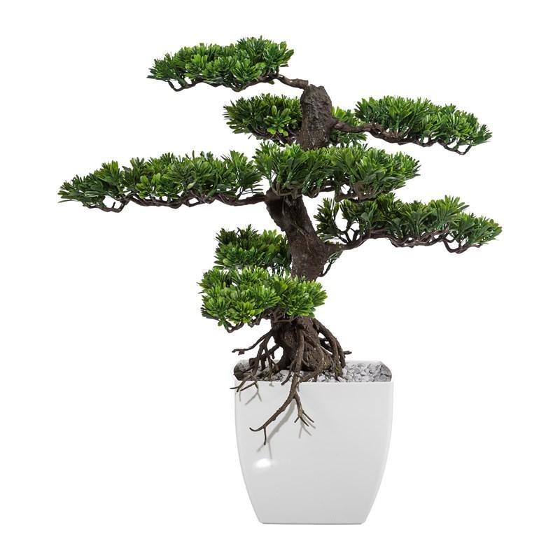 Bonsai 65 cm vč. květináče_0