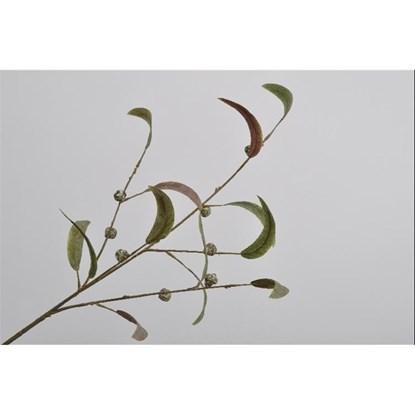 Větvička eukalyptu 80 cm_0