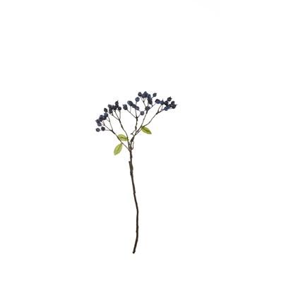 Větvička borůvky 50 cm ASA Selection_0