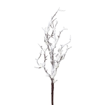 Větvička se sněhem_0