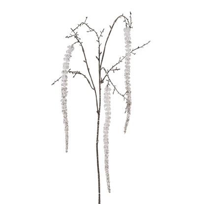 Amaranthus větvička_0
