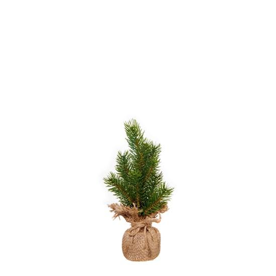 Stromek borovice 25cm_0