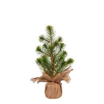 Stromek borovice 33cm_0
