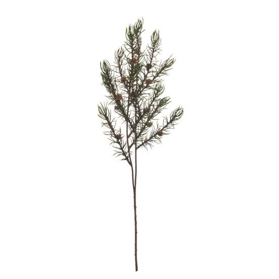 Větvička borovice 46cm_0