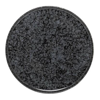 Kameninový talíř Noir 18 cm_2