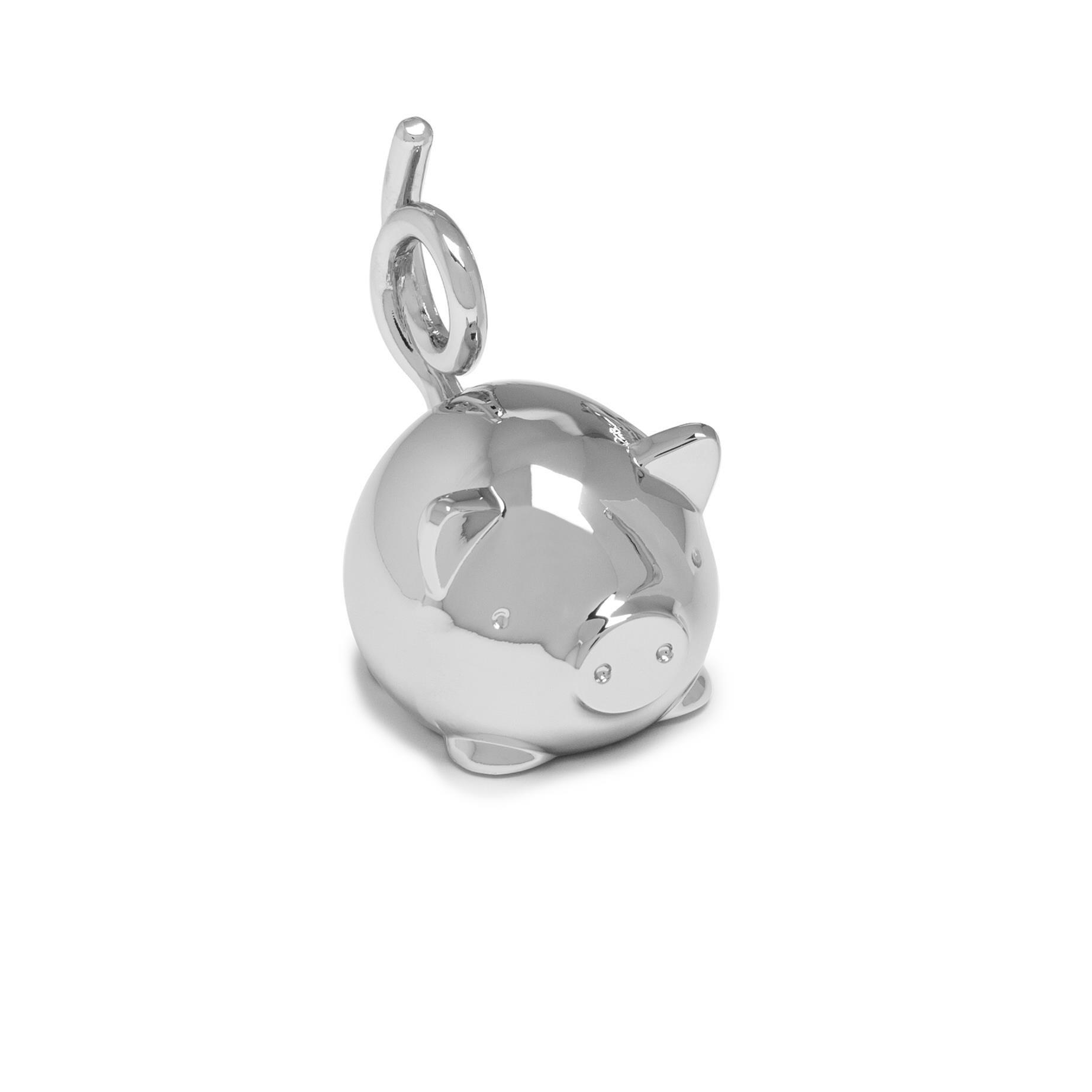 Šperkovnice SQUIGGY PIG chrom_1
