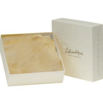 Dárková krabice 26x26 Lothantique_0