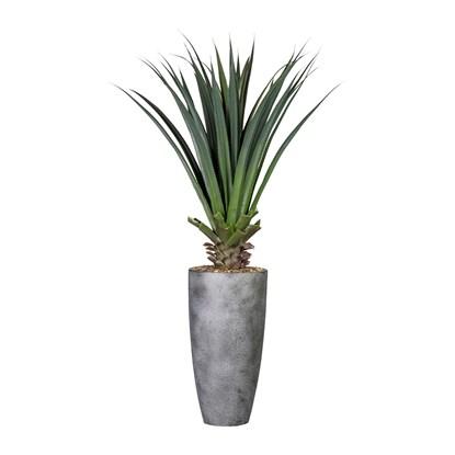 Aloe 150 cm (včetně květináče)_0
