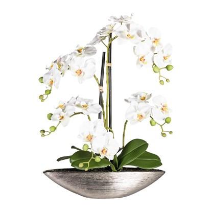 Phalaenopsis 55 cm (vč.keramické mísy)_1