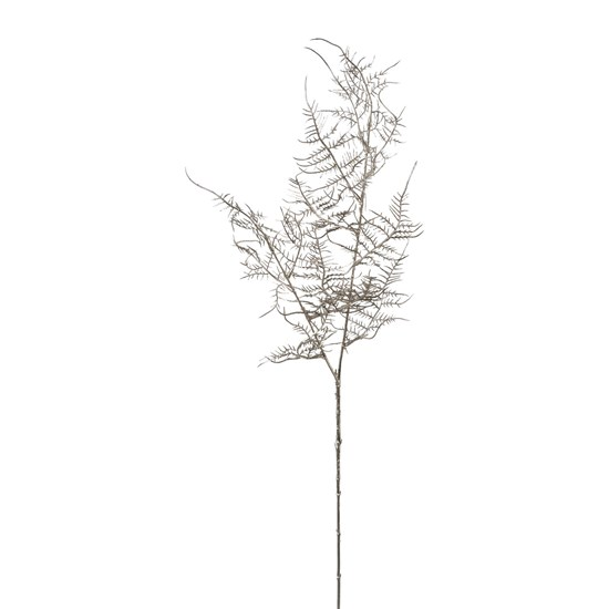Větev Asparagus 75 cm stříbrná_0