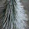 Dekorace vánoční strom SPINKLE 30 cm, zasněžený_2