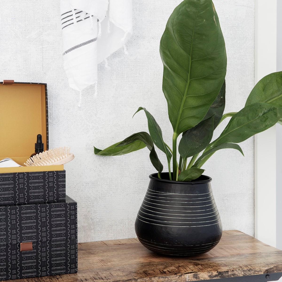 Květináč / váza STRIBE 30 cm černý_0