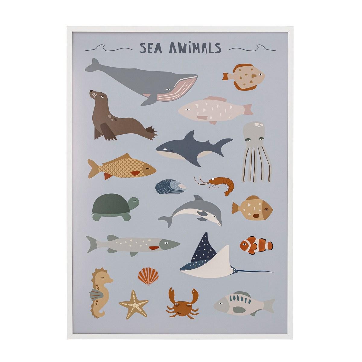 Plakát v bílém rámu Cay mořští živočichové 72x52 cm_3