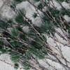 Dekorace větev modřínu LARCH 97 cm přírodní zelená_0