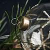 Vánoční ozdoba STAR Clear 8 cm koule čirá_2