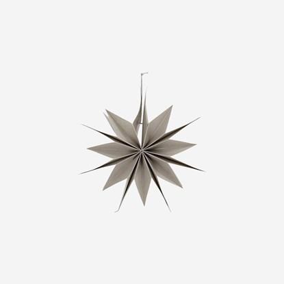 Obrázek Papírová 12cípá hvězda CAPELLA 30 cm perleťová