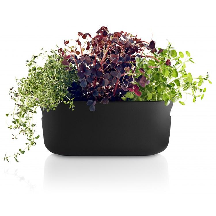 Samozavlažovací květináč na bylinky HERB černý_2