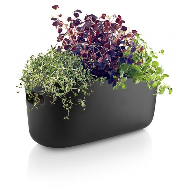Samozavlažovací květináč na bylinky HERB černý_3