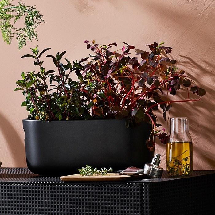 Samozavlažovací květináč na bylinky HERB černý_5